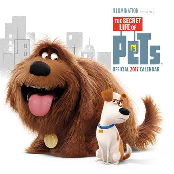 Kalenteri 2017 Secret life of pets