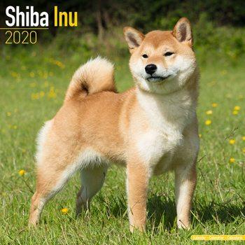 Kalenteri 2020  Shiba Inu