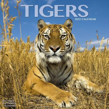 Kalenteri 2022 Tigers