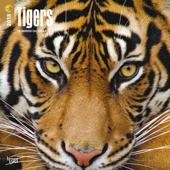 Kalenteri 2018 Tigers