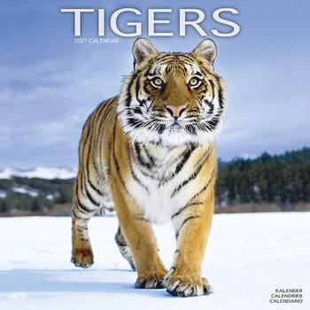Kalenteri 2021 Tigers