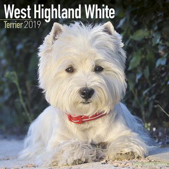 Kalenteri 2019  West Highland Terrier