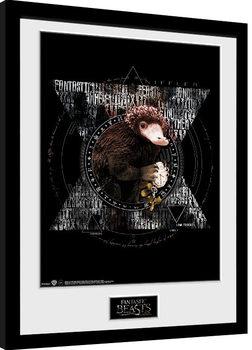 Fantastic Beasts - Niffler Circle Kehystetty juliste