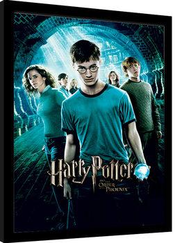 Harry Potter - Order Of The Phoenix Kehystetty juliste