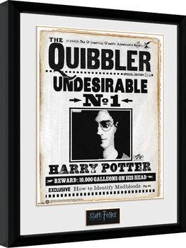Harry Potter - Quibler Kehystetty juliste