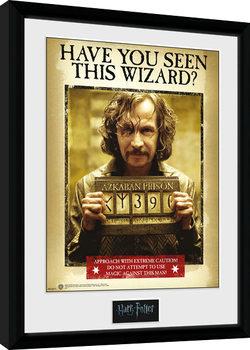 Kehystetty juliste Harry Potter - Sirius Azkaban