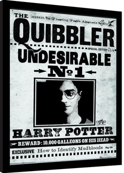 Harry Potter - The Quibbler Kehystetty juliste