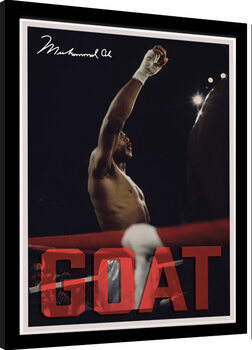 Kehystetty juliste Muhammad Ali - GOAT