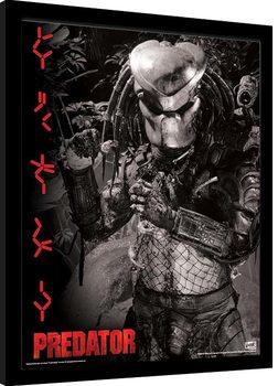 Kehystetty juliste Predator - Extraterrestrial Warrior