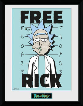 Rick and Morty - Free Rick Kehystetty juliste