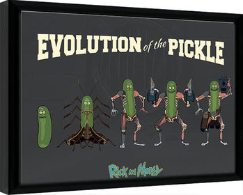 Kehystetty juliste Rick & Morty - Evolution Of The Pickle