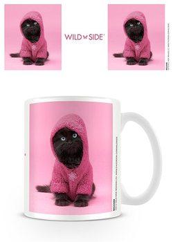 Cup Kitten - In Hoodie