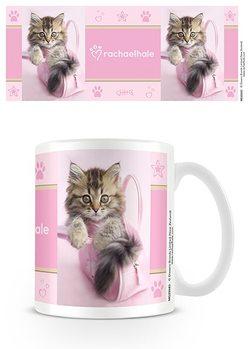 Cup Kitten - Minnie, Rachael Hale