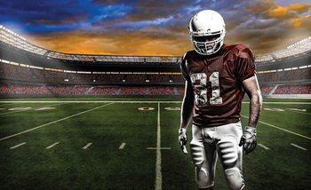 Kuvatapetti, TapettijulisteAmerican Football Stadium