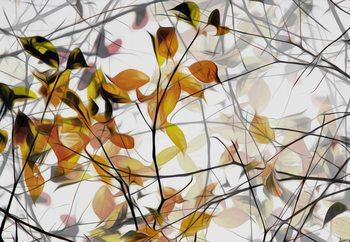 Autumn Song Valokuvatapetti