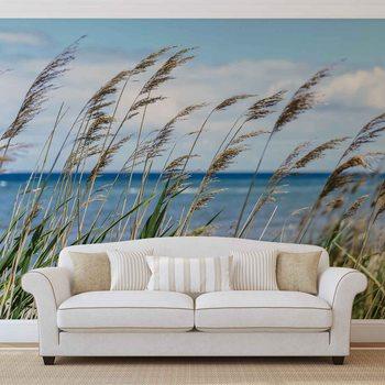 Beach Sea Sand Nature Valokuvatapetti