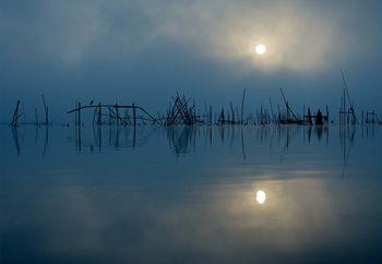 Blue Sun Valokuvatapetti