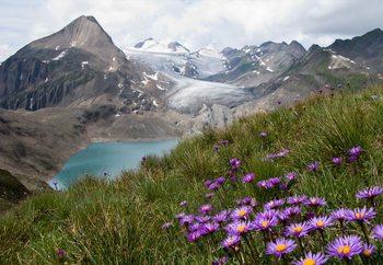 Color Between Mountains Valokuvatapetti
