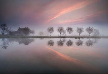 Dreamland Valokuvatapetti