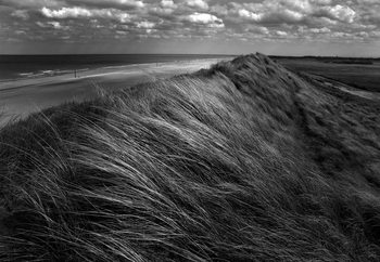Dunes Hair Valokuvatapetti