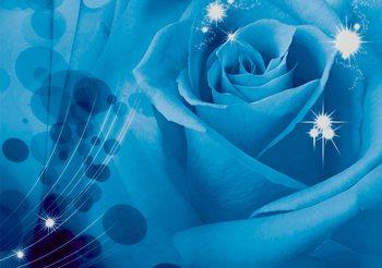 Flower Rose Valokuvatapetti