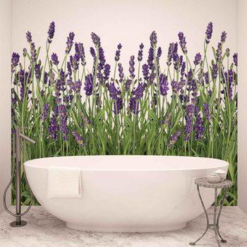 Flowers Lavender Valokuvatapetti