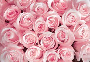 Kuvatapetti, TapettijulisteFlowers Roses
