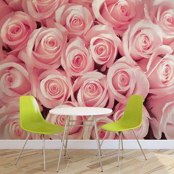 Flowers Roses Valokuvatapetti