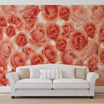 Flowers Roses Red Valokuvatapetti