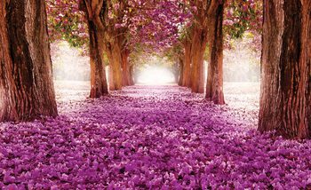 Flowers Tree Path Pink Valokuvatapetti