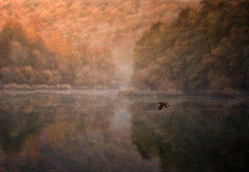 Flying Reflection Valokuvatapetti
