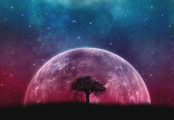 Galaxy Tree Valokuvatapetti