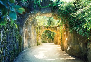 Garden Tunnel Valokuvatapetti