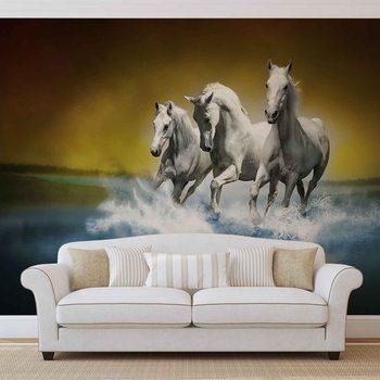 Horses Valokuvatapetti