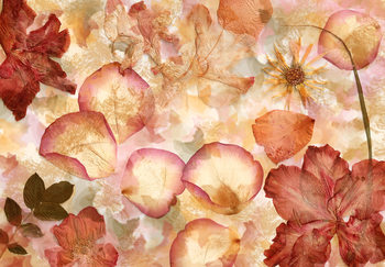Kukkia Kuvatapetti