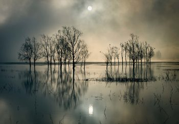 Lake's Secret Valokuvatapetti