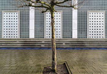 Little Tree Scape Valokuvatapetti