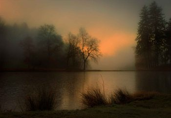 Lovely Dawn Valokuvatapetti