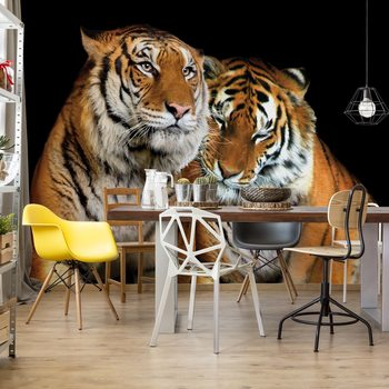 Loving Tigers Valokuvatapetti