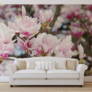 Magnolia Flowers Valokuvatapetti