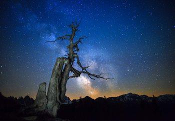 Milky Way Valokuvatapetti