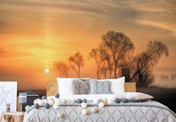 Misty Sunset Valokuvatapetti
