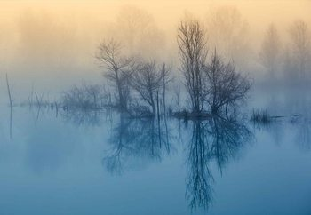 Morning Reflection Valokuvatapetti
