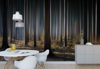 Mystic Wood Valokuvatapetti