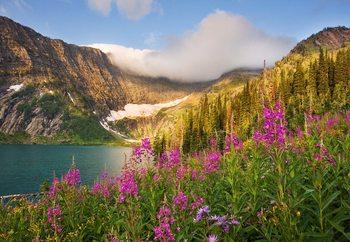 Nature's Glory Valokuvatapetti