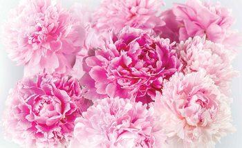 Kuvatapetti, TapettijulistePink Carnations