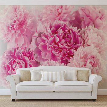 Pink Carnations Valokuvatapetti
