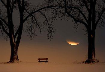 Place Of Silence Valokuvatapetti