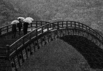 Rainy Walk Valokuvatapetti