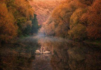 Romantic River Valokuvatapetti